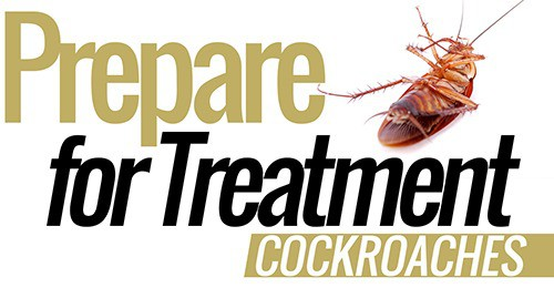 Cockroaches-pest-control-prepare for treatment